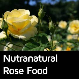 Nutranatural Rose Food